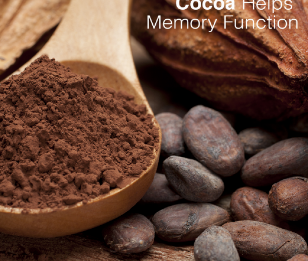 Cocoa Helps Memory Function