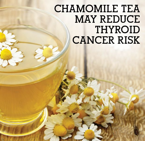 Chamomile Tea May Reduce Thyroid Cancer Risk