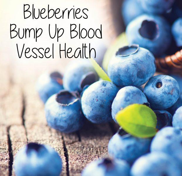 Blueberries Bump Up Blood Vessel Health