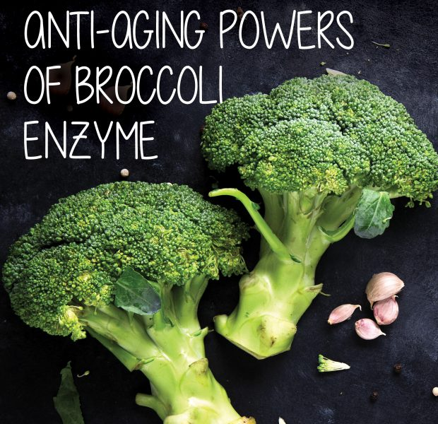 Broccoli enzyme