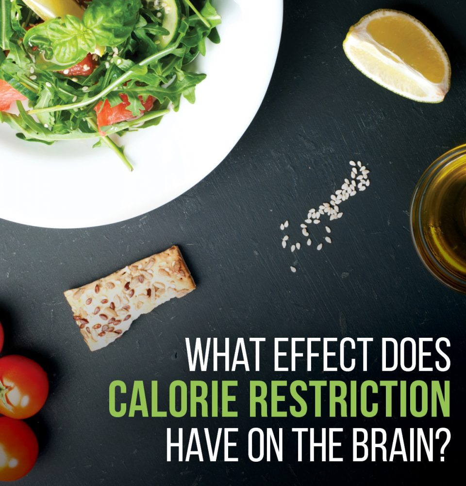 Calorie Restriction and Your Brain